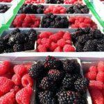 Blackberry & Raspberry join the Scandinavian Delights Family of Jams